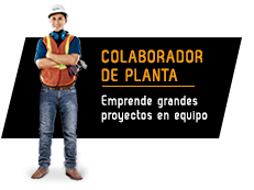 colaborador_de_planta